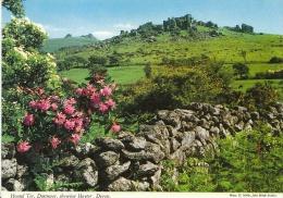 Devon Postcard - Hound Tor, Dartmoor, Showing Haytor   LSL1878 - Autres