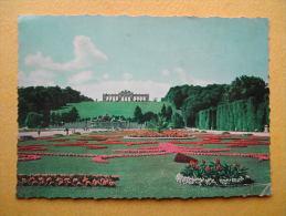 WIEN. Le Château De Schönbrunn. Le Parc. - Château De Schönbrunn