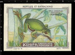 Old Original Swiss Poster Stamp (cinderella, Label) Nestle - Reptiles Amphibians Frog Frosch Grenouille - Frogs