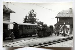 Photo Loco 105, Voitures CEG Et CP Gare De Chamby Cliché Schnabel - Stations - Met Treinen