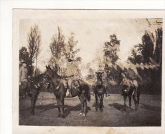 Photo Originale Octobre 1914 HULLUCH (près Wingles) - Soldats Allemands Au Château (A12, Ww1, Wk1) - France