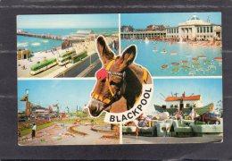 44150   Regno  Unito,      Blackpool,  NV(scritta) - Blackpool