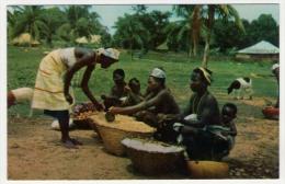 Postcard -  Guinea Bissau    (12873) - Guinea-Bissau