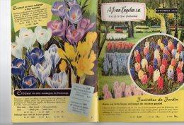 CATALOGUE  FLEURS) PLANTATIONS  50  PAGES  -150 PHOTOS DE FLEURS DIFFERENTES (COULEUR) SUPERBE - B. Plantes Fleuries & Fleurs