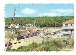 Cp, 33, Le Cap Ferret, Le Petit Train Forestier, écrite - Frankreich