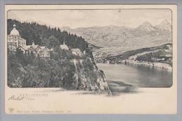 Uri Seelisberg 1900 Ungebraucht Foto Gebr.Wehrli #1561 - UR Uri