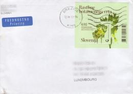 Excellent Cover / Lettre - Slovenia (Brezice) To Luxembourg - Bloc Kranjska Bunika - Scopolia Carniolica - Autres