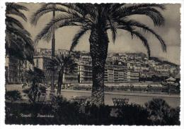 VER2811 - NAPOLI Panorama . Nuova - Napoli
