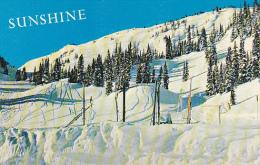 Canada Sunshine Village Ski Slopw Banff Alberta