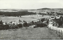 Bure - Panorama … De La Localité -1973 ( Voir Verso ) - Tellin