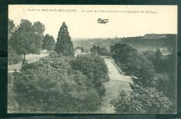 N°5-   Forêt De Meudon-Bellevue - Le Parc De L'observatoire Et L'orphelinat St-Philippe    Dab12 - Meudon