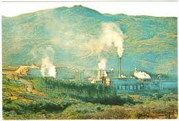 Usutu Pulp Plant At Bhunya - & Industry - Swaziland