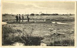Pitch Lake Trinidad, B. W. I. - Trinidad