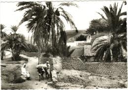 Bou-Saada - Cité Du Bonheur A L'entrée Du Village - Algérie