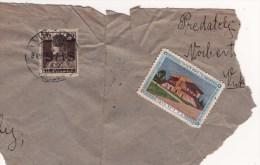 Judaica Old KKL JNF Label (?) On Letter Cutout 1919 Yugoslavia SHS Sent From Vukovar - Vignetten (Erinnophilie)