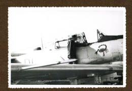 Photo Avion T 6 Et Mecano ( Ou Pilote ) Embleme Scorpion - Aviation