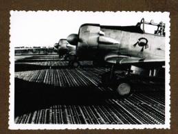 Photo Avions T 6 Garés (embleme Scorpion) - Aviation