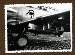 Photo Avion T 6  (embleme Scorpion, Detail Armement Sous Aile ) - Aviation