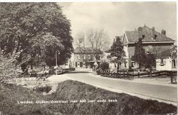 LIENDEN - Gelderland - Oudsmidsestraat Met 600 Jaar Oude Beuk - Fotokaart - Nederland