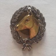 Badge / Pin (Equestrianism / Horseback Riding) - - Badges