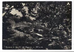 VER2905 - MONZONE DI PAVULLO NEL FRIGNANO 1958 . VIAGGIATA PER LA FRANCIA - Modena