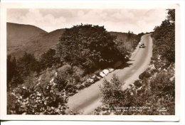 Autoroute Du Puy-de-Dôme Au Bois Des Charmes - Auvergne