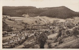 Allemagne - Alpirsbach Im Schwarzwald - Panorama - Alpirsbach