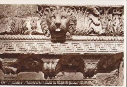 Liban - Archéologie - Baalbeck -  Lion Temple