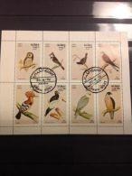 Oman - Velletje Vogels 1972 - Oman
