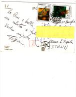 CINA R.P,  1993 - Cartolina Per L´Italia  - Insetti - 1949 - ... Repubblica Popolare