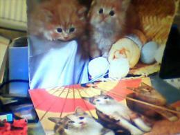 10 CARD GATTI  GATTO CHAT CHATS  MICINI V1957 /1995 EH2818 - Katten