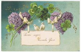 1900s EMBOSSED POSTCARD - SWALLOW & FLOWERS - 38 - Illustrateurs & Photographes