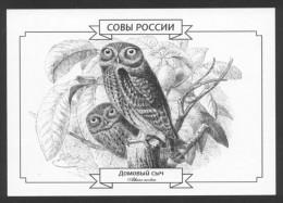 SALE ! ALL FROM 1 EURO ! ** Postal Stationery Russian Owls #3 (of 5) Athene Noctua Little Owl - Eulenvögel