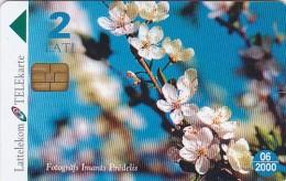 Latvia, D-024, Spring Flowers, 2 Scans. - Latvia