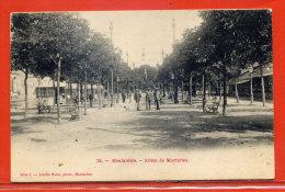 CARTE POSTALE MONTAUBAN ALLEES DE MORTARIEU - Montauban
