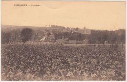 19792g CHAMPS De CULTURE - Panorama - Neerijssche - 1923 - Huldenberg