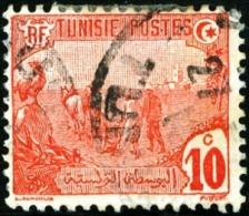 TUNISIA, FRENCH PROTECTORATE, AGRICOLTURA, 1906, FRANCOBOLLO USATO, Mi 33, Scott 34, YT 32 - Tunisie (1888-1955)
