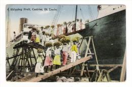 SAINTE-LUCIE  ( ST. LUCIA ) /  CASTRIES  /  SHIPPING  FRUIT  ( Chargement De Bananes Sur Paquebot-cargo ) /  JAMAIS  VUE - Sainte-Lucie