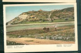 Haiffa - Le Mont Carmel     -   Dab101 - Palestine