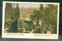 Jérusalem  -  Jardin De Gethsémanie    -   Dab112 - Palestine