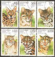Benin 1996 Mi# 806-811 Used - Wild Cats - Felinos