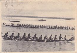 AFRIQUE,AFRICA,CAMEROUN,CAMEROON,1949,COURSE,EFFOR T,GRANDE PYROGUE,RAMEUR - Cameroun