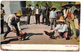 MEXICO Anno 1908 -  6 Postcards Cock Fight , Coliseo Viego, Stone Sails Game Barefoot To Market, Oaxaca, Ollero - Venters