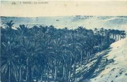 NEFTA - La Corbeille (CAP. 5) - Tunisie