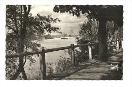 Cp, 94, Villeneuve-Saint-Georges, La Promenade Le Long De La Seine, écrite - Villeneuve Saint Georges