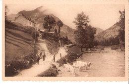 Montagne-Gavarnie-Gèdre (Hautes-Pyrénées)-Le Pic De Sécugnac-2575m -Vaches Dans La Rivière-Animée - Gavarnie