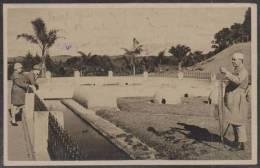 O) 1928 BRAZIL, POSTCARD INSTITUTO BUTANTAN SAO PAOLO TO GERMANY. - São Paulo