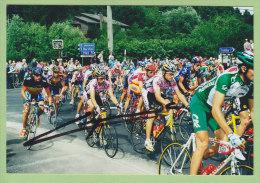Dalhem : Passage Tour De France 2001. Voie Des Fossés, Rue Trembleur, Voie Du Thier. Etape Anvers Seraing. Photo - Dalhem