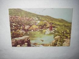 Les Sources Du Jourdain - Cartes Postales