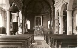 Genlis - Intérieur De L'Eglise - France